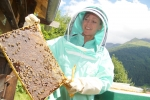 "Honey is developing well! The Carnica bees (nickname: ""Hochgebirgssportbienen"") am Arlberg, Tyrol, do a great job! And I feel very safe and happy in my new BJ Sherriff Apiarist beekeeper suit!"