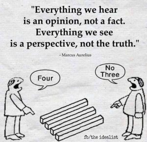 Opinion & Perspective